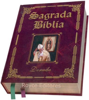 20101028083340-1218649434-la-20biblia.jpg